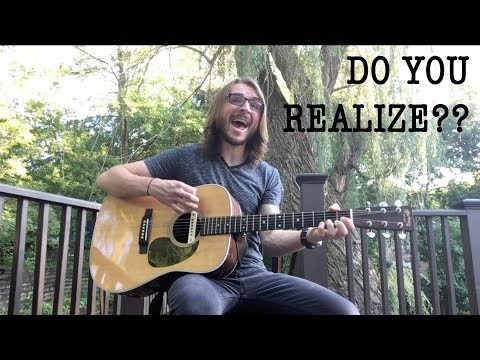 The Flaming Lips - Do You Realize?? - Cover