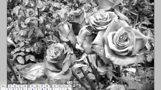 [포토샵혁명방송]흑백사진을 구성하는 요소와 베이스 라인 잡기