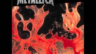 Metallica - Poor Twisted Me
