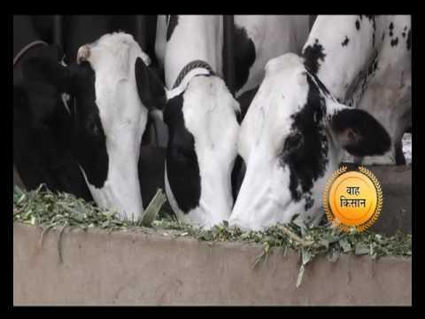 2 साल एक पड़ताल - वाह किसान | Wah Kisan - Success Story - 5 (Spot)