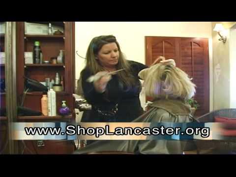 Lancaster Economic Stimulus Package