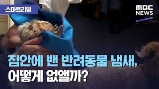 [스마트 리빙] 집안에 밴 반려동물 냄새, 어떻게 없앨까? (2021.01.19/뉴스투데이/MBC)