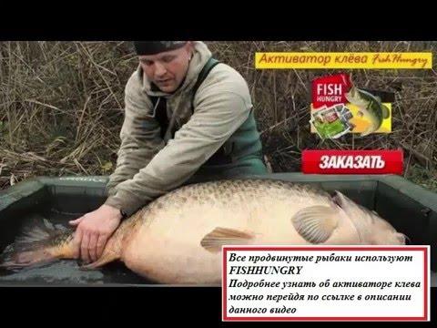 как пользоваться активатором клева рыбы
