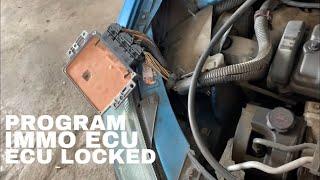 Ecu Mesin nge-Lock Mobil Mogok - peugeot 206