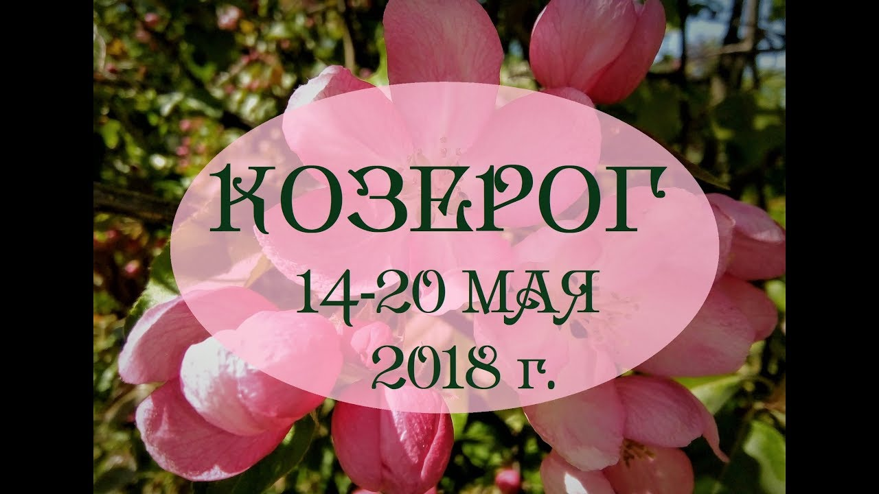 КОЗЕРОГ.Таро гороскоп с 14 по 20 мая 2018г. Онлайн гадание.