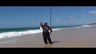 Popular Videos - Sunshine Coast, Queensland & Fishing