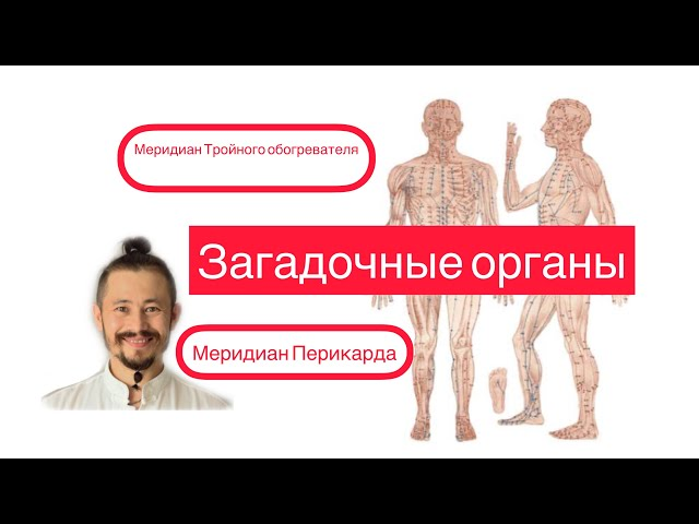 Тройной обогреватель и Перикрад\ Загадочные органы в китайской медицине
