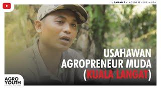 Agropreneur Muda Ternakan Lembu.. kejayaan tidak mengenal latarbelakang pendidikan