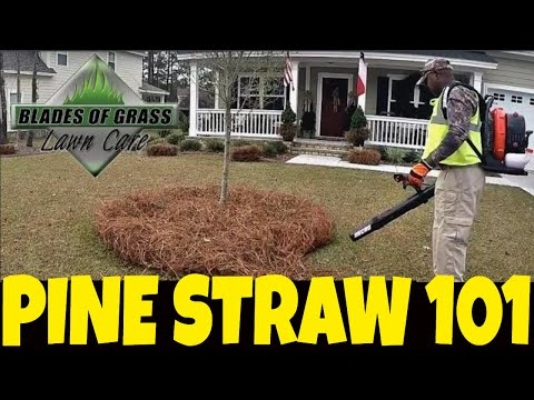 Pine Straw How To Install - Lay- Roll - Put Dow- Tuck- Buy -  Maintain- Blow- Coverage Area