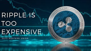 EOS MainNet! Western Union NOT Satisfied with Ripple Trial - Today's Crypto News