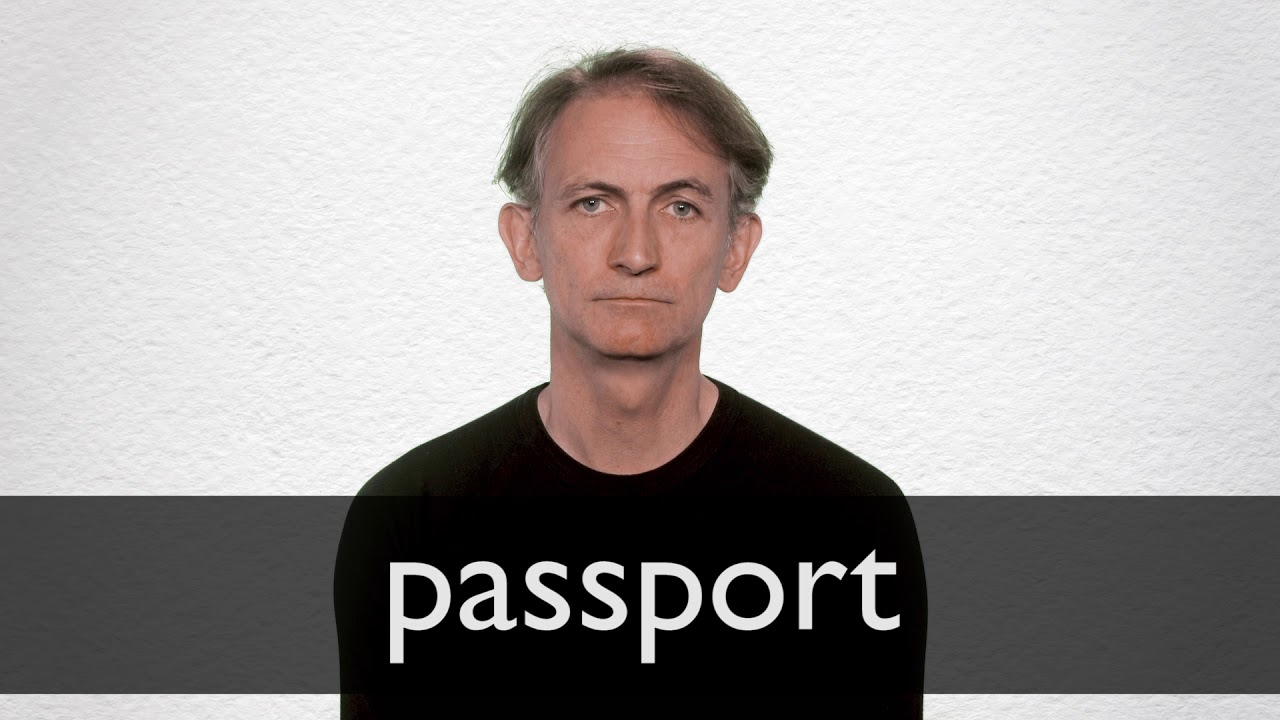 Passport definition and meaning   Collins English Dictionary