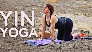 1 hr Stress Reducing Yin Yoga With Fightmaster Yoga