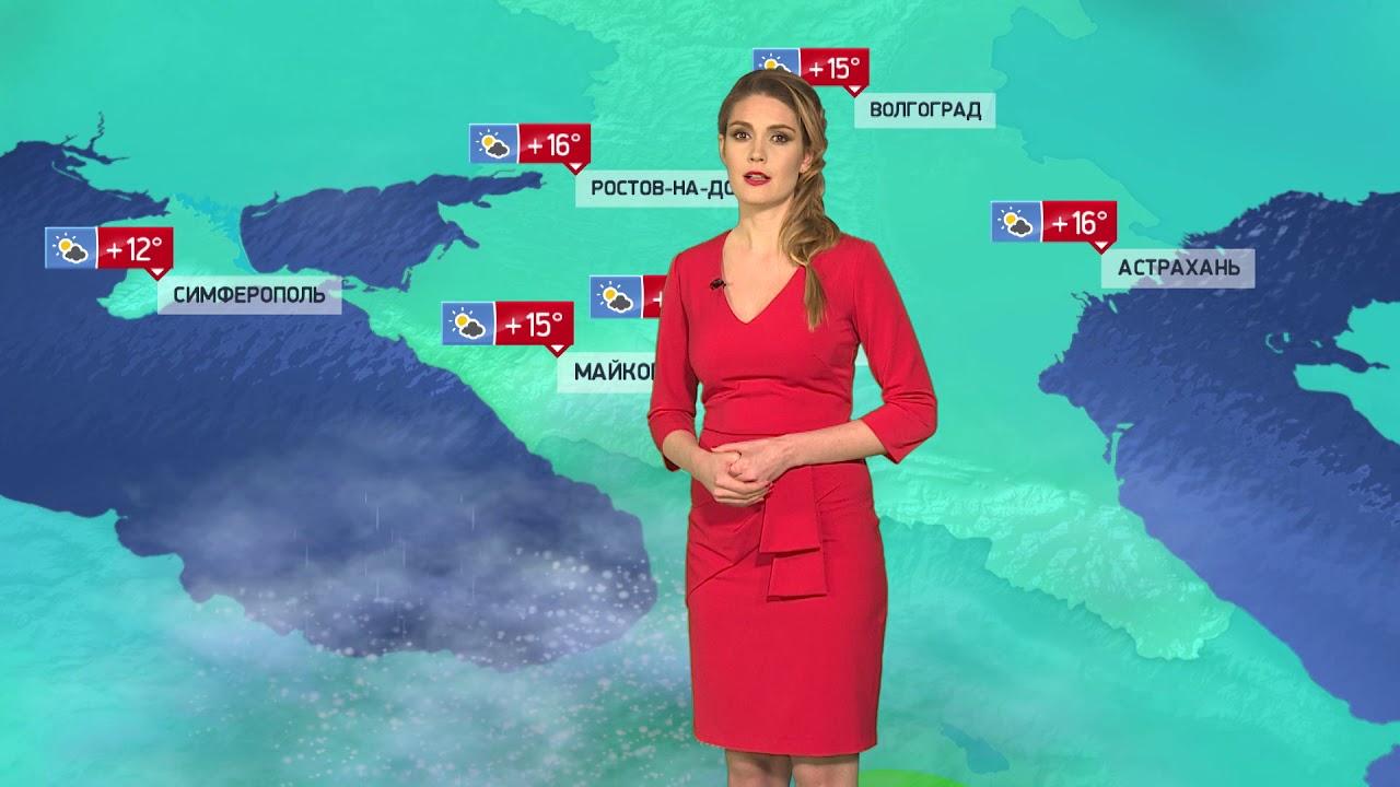 недорогих телеведущие твц прогноз погоды фото это так