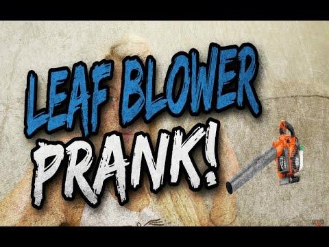 Leaf blower prank