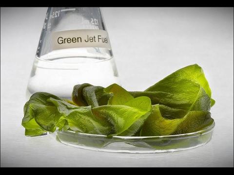 Biofuels Making the Military Go Broke