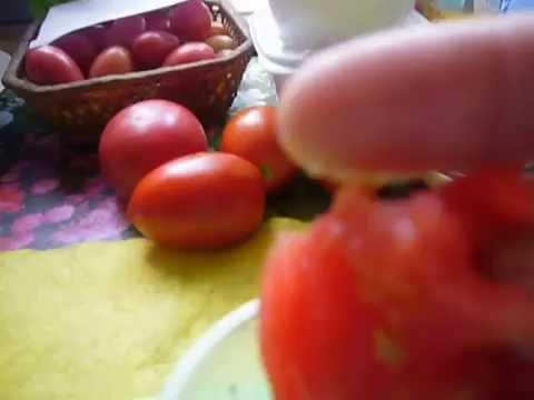 Как правильно собрать и сохранить семена помидоров 16