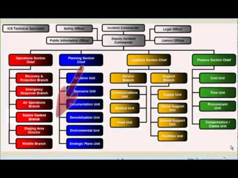 ICS Organization Presentation1 - YouTube - ics organizational chart
