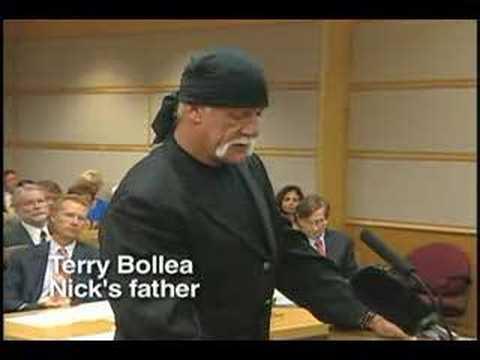 Nick Bollea sentencing excerpts, first half