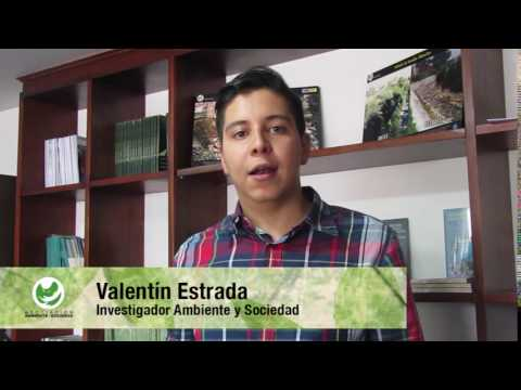 Si Ambiental por el cuidado de las áreas protegidas- Posconflicto Colombia