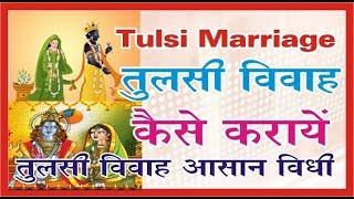 तुलसी जी का विवाह कैसे करायें आसान  विधि  ।।  क्यों की जाती है तुलसी की शालिग्राम विष्णु जी से शादी