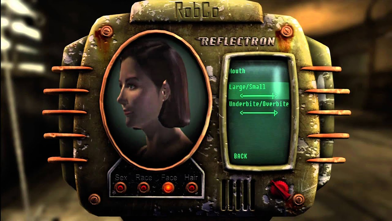 Fallout  Female Character Builds