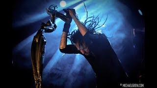 ray luzier solo blind korn live sziget festival 2012