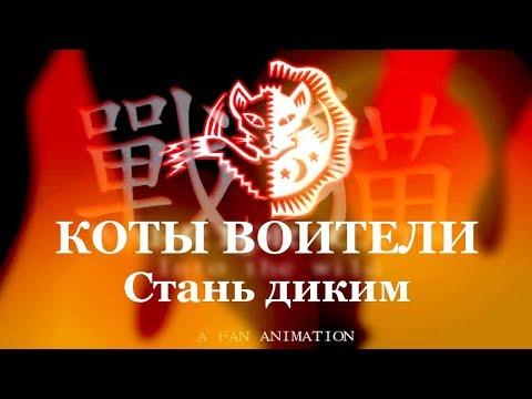 Коты воители на русском мультфильм