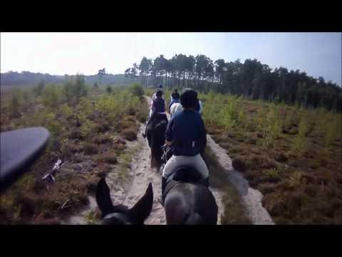 RMA Sandhurst Drag Hunt Breakfast Ride