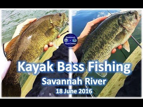 Kayak Bass Fishing on the Savannah River, June 2016