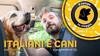 Italiani e cani, come vivere al meglio assieme (in viaggio e non)