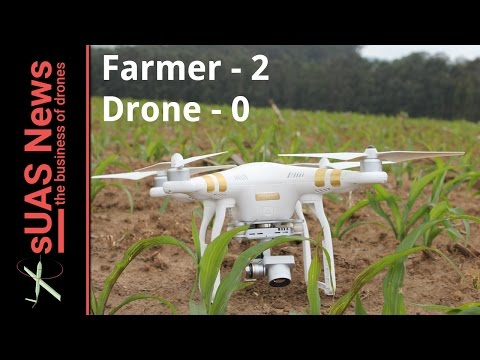 Crop counting with a DJI Phantom - Farmer 2, Drone 0