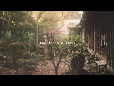 "Guesthouse toco. Movie ""The Beautiful Days"""