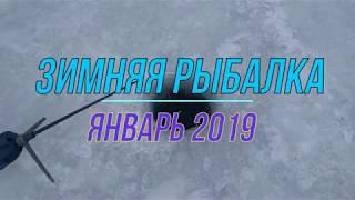 Зимняя рыбалка , январь 2019