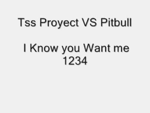 Tss Proyect VS Pitbull - I Know you Want me 1234