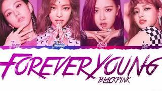 Leave a comment for me!!! (instrumental) - forever young blackpink bg vocal