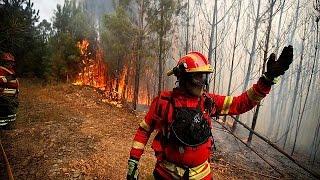 فيديو..استمرار الحرائق الضخمة بالبرتغال  لليوم الرابع على التوالي