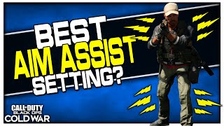 Which Aim Assist Type is Best? | (New Settings Added to Cold War!)