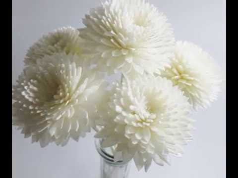 Gerbera Sola Wood Handmade Dried Flowers Patterns Reed Diffuser Wedding Fragrance Whole Sw007 You