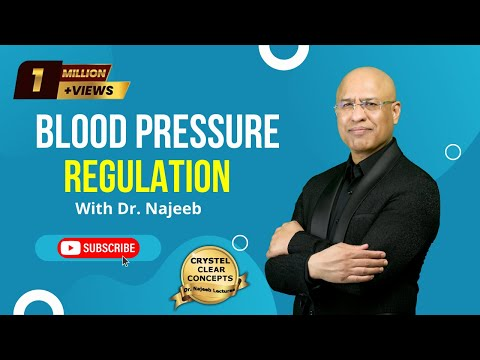 Hypertension - High & Low Blood Pressure Regulation