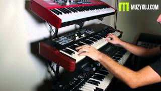 Compare / Porównanie: Hammond XK1C, Nord Electro 4D, Numa Organ 2.