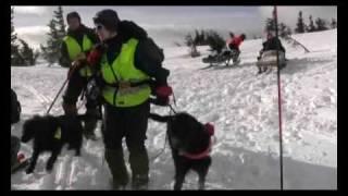 Høgskolen i Telemark , Vinterfjell, søk og redning skred.