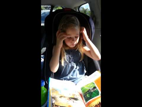 R reading (Florida Virtual School, first grade)