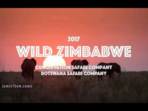 Wild Zimbabwe 2017
