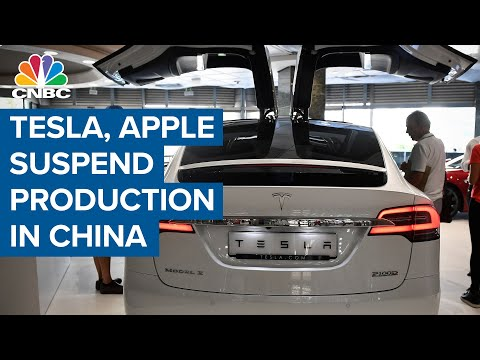 Tesla, Apple suspend production after China imposes strict energy consumption rules
