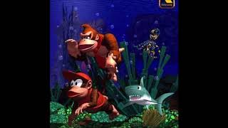 Aquatic Introspection (DKC Vaporwave)