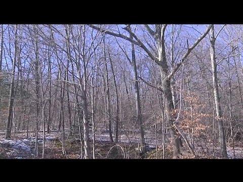 Threats to the conservation of Massachusetts land
