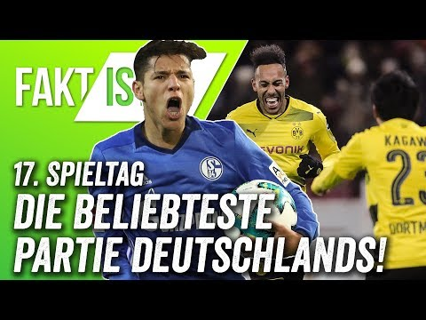 Fakt ist..! Nagelsmann vs. Stöger, Bayer weiter unbesiegt? Bundesliga Vorschau 17. Spieltag 17/18
