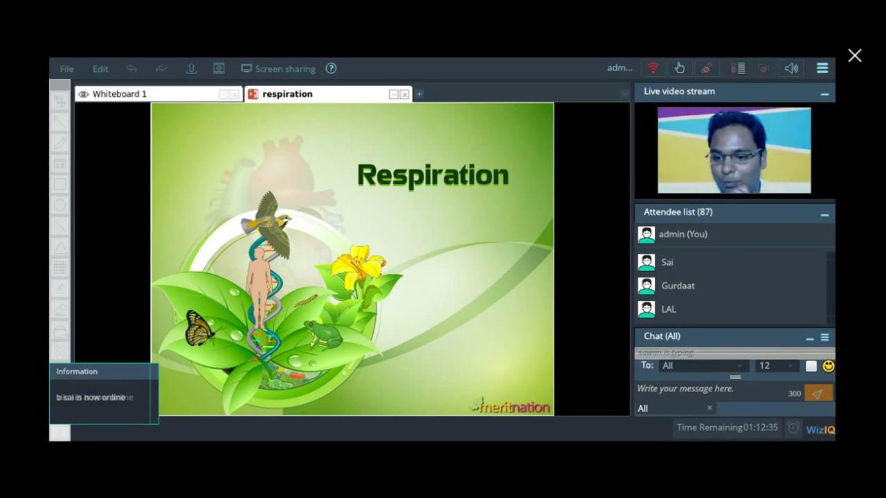 Meritnation live chat