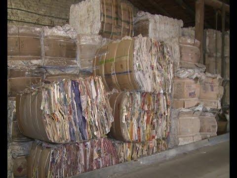 Сбор макулатуры как бизнес видео станок производства туалетная бумага макулатура