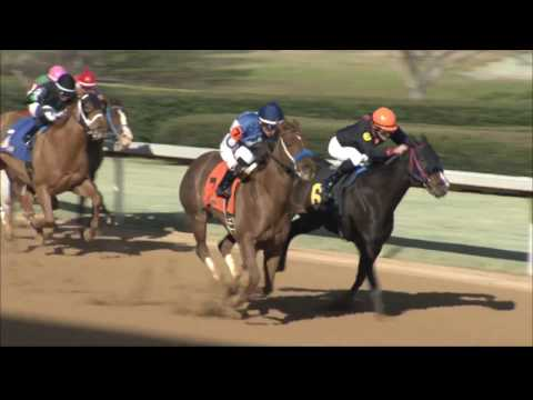 Oaklawn Today Replay Show Feb. 9 2017